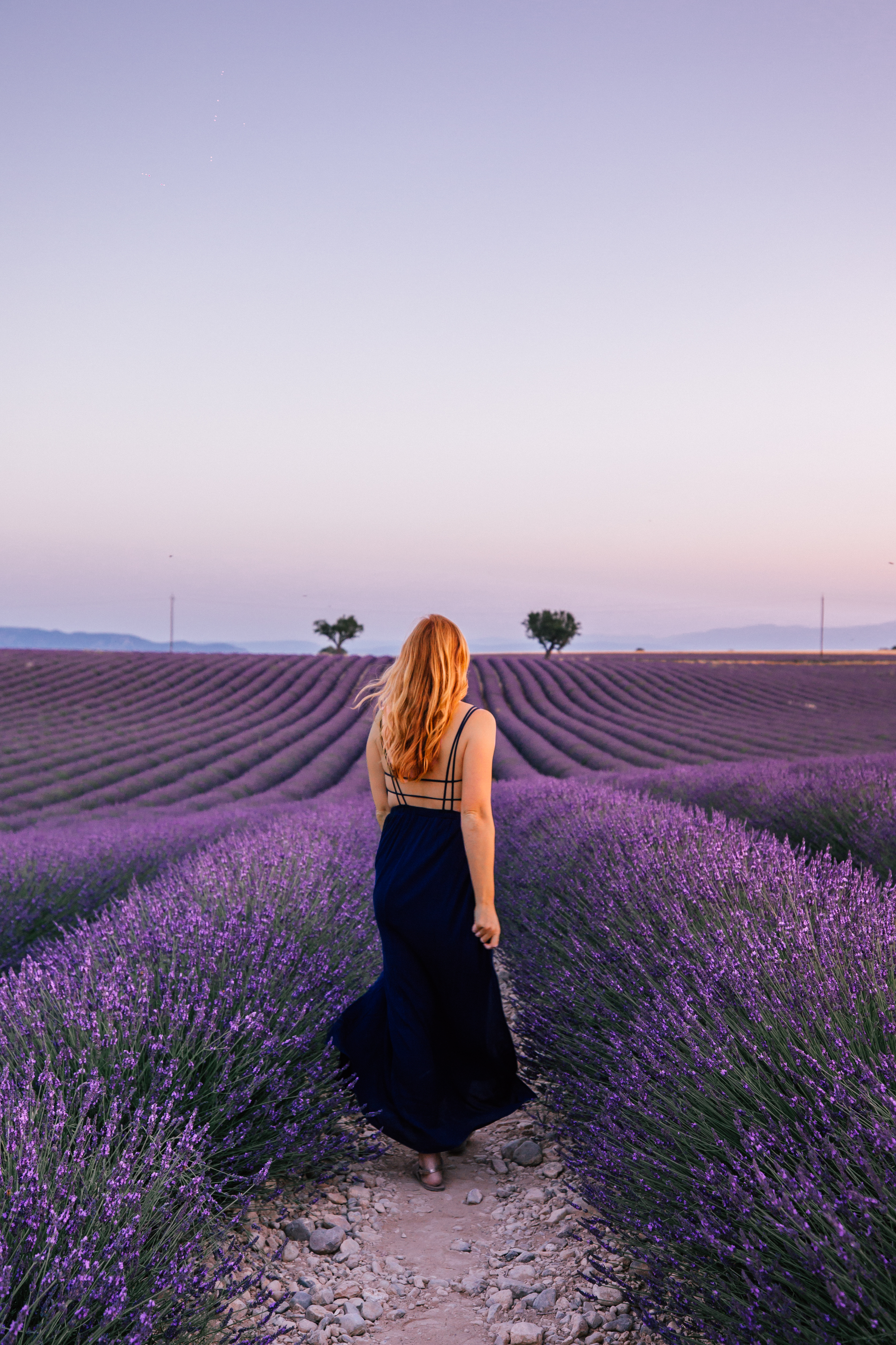 Where to Find Best Most Instagrammable Lavender Fields in